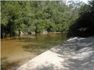 evergreen pkwy crestview fl land sold lot trustee sale